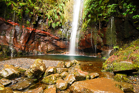Levadas de Madeira Cascada das 25 fontes