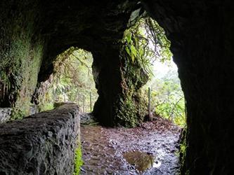 Levadas de Madeira levada Caldeirao Verde